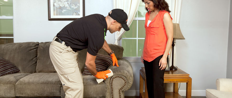 Brownsville, TN carpet upholstery cleaning