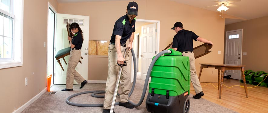 Brownsville, TN cleaning services