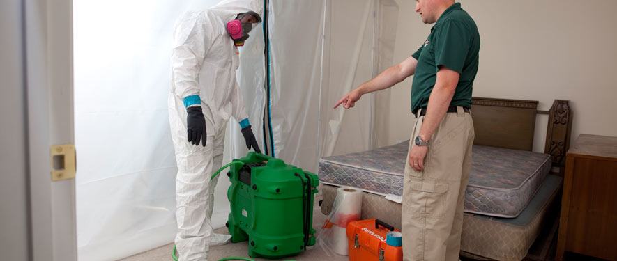 Somerville, TN mold removal process